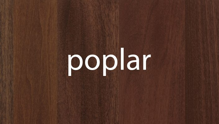 Poplar Stain Samples