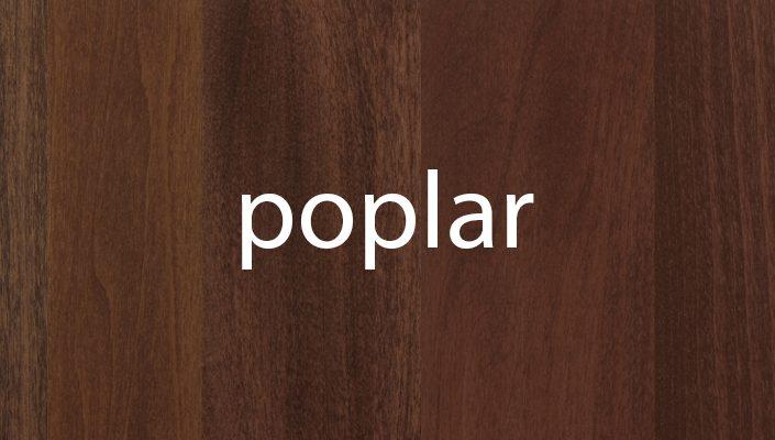 Poplar Stain Samples