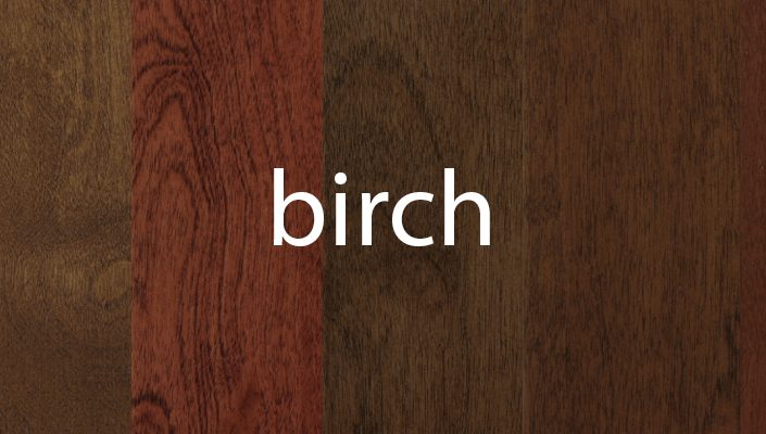 Birch Stain Samples